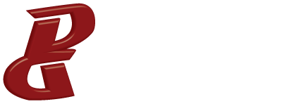 Digital Guru logo